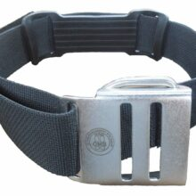 Cam Band w/Stainless Buckle
